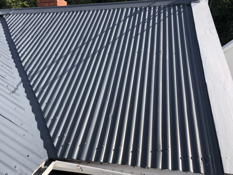 Te Atatu Roof Painting House Painters West Auckland